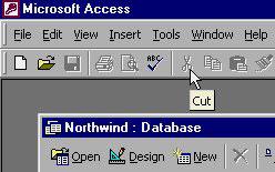 MS Access 2003 - Bài 2: Sử dụng môi trường Access